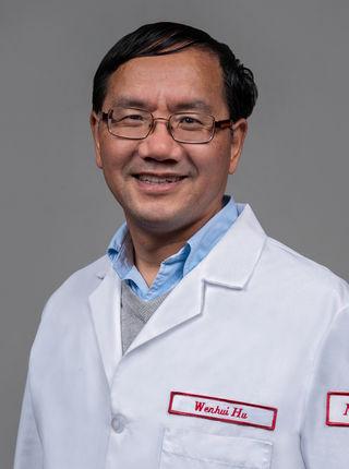 Wenhui Hu, MD, PhD