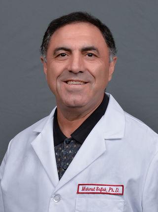 Mahmut Safak