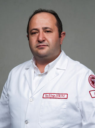 Ilker Sariyer, DVM, PhD