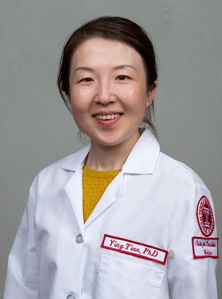 Ying Tian