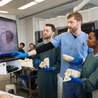 Students in Gross Anatomy Lab