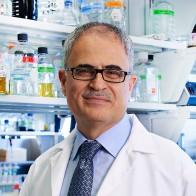 Kamel Khalili, PhD