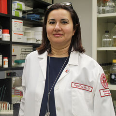 Dr. Tukel - v2