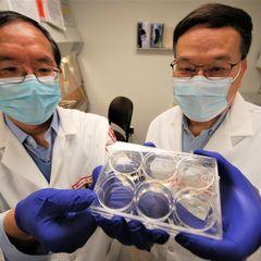 Drs. Hu and Ho